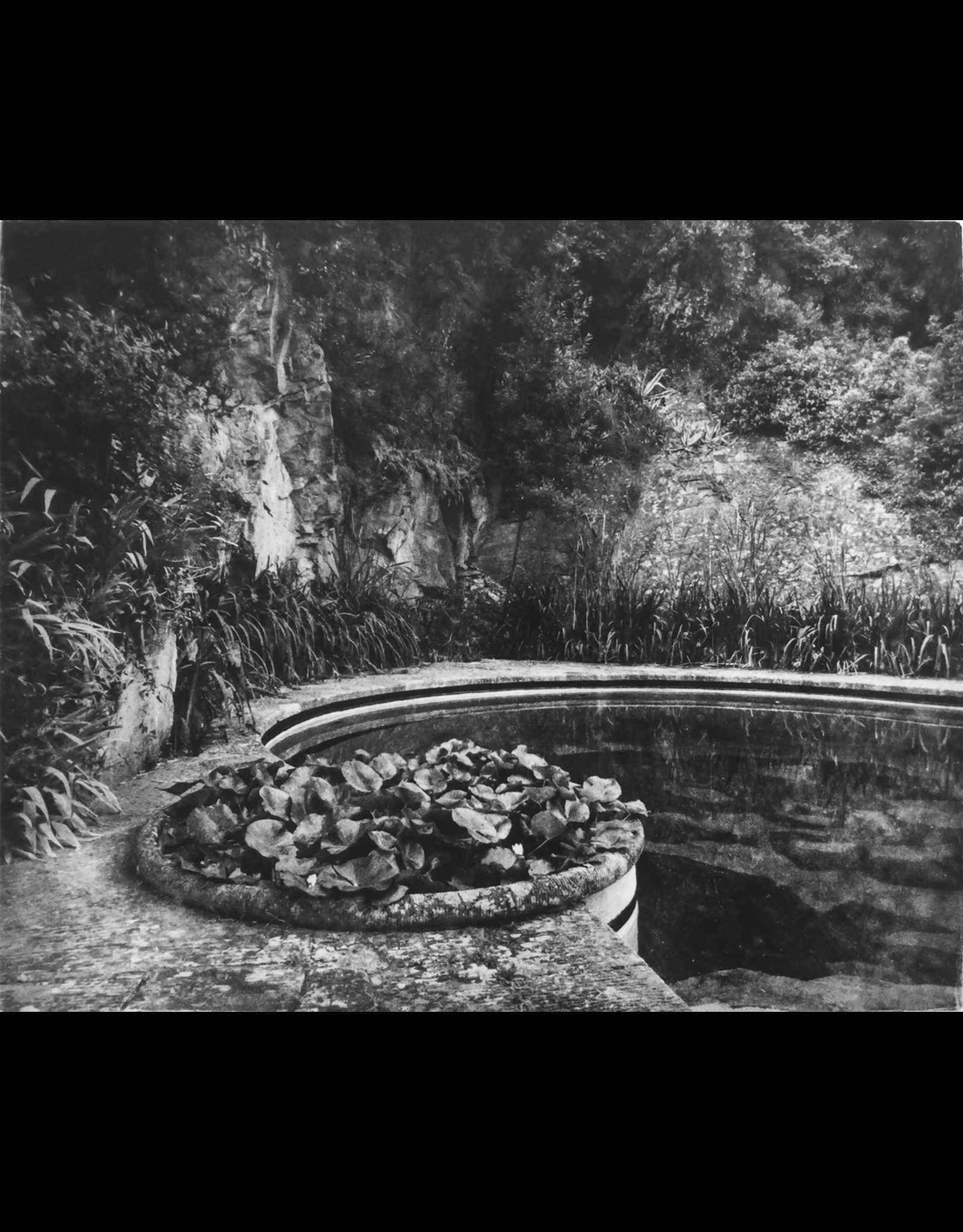 McLachlan, Ted Villa Fontanelle, Florence - Lotus Pool, Ted McLachlan