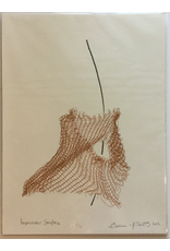 Roberts, Andrea Impervious Surface, Print