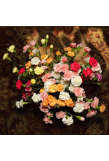 Glawson, Larry untitled (carnations overhead), homebodies series, Larry Glawson
