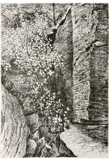 Simoens, Leo Limestone Cliffs, Leo Simoens