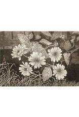 Simoens, Leo Wild Sunflowers, Leo Simoens