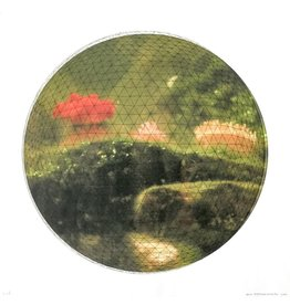 Josephson-Laidlaw, Erin Sea Anemone (Red), Erin Josephson-Laidlaw