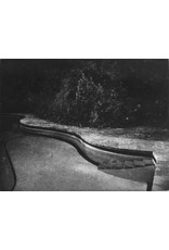 McLachlan, Ted Villa Fontanelle, Florence - Pool Stairs, Ted McLachlan