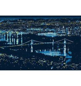 Valko, Andrew Vancouver Lights, Andrew Valko
