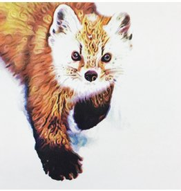 Graham, Peter Pine Marten (Candied Mammals of the Boreal Forest), Peter Graham