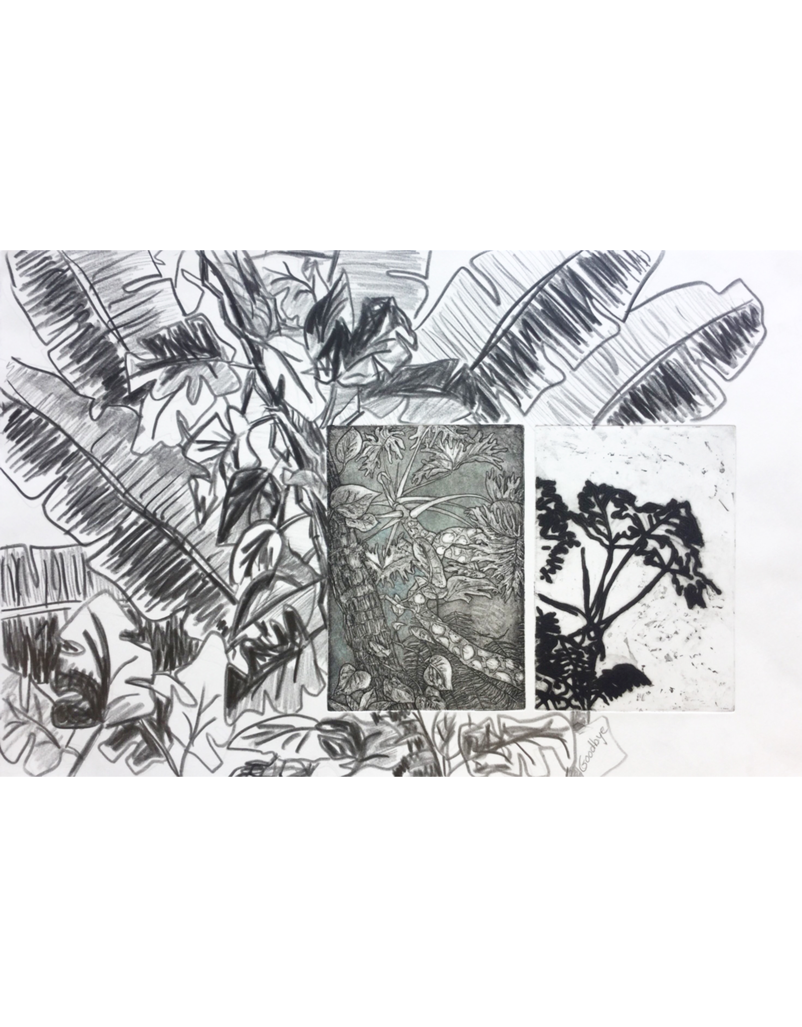 Cornelius, Karen Plants Imprinted (on Mind and Paper), Karen Cornelius