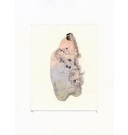 Josephson-Laidlaw, Erin Grizzly Bear Skull, (from Some Specimens series), Erin Josephson-Laidlaw