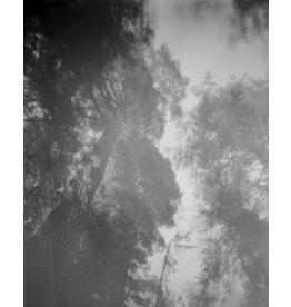 Fuller, Sarah Looking Up, Looking Through (Edition 1 of 3), Sarah Fuller
