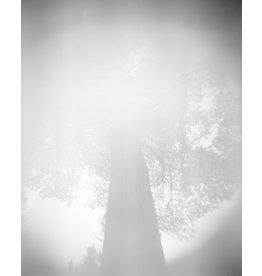 Fuller, Sarah I Dreamed I Saw a Giant (Edition 1 of 3), Sarah Fuller