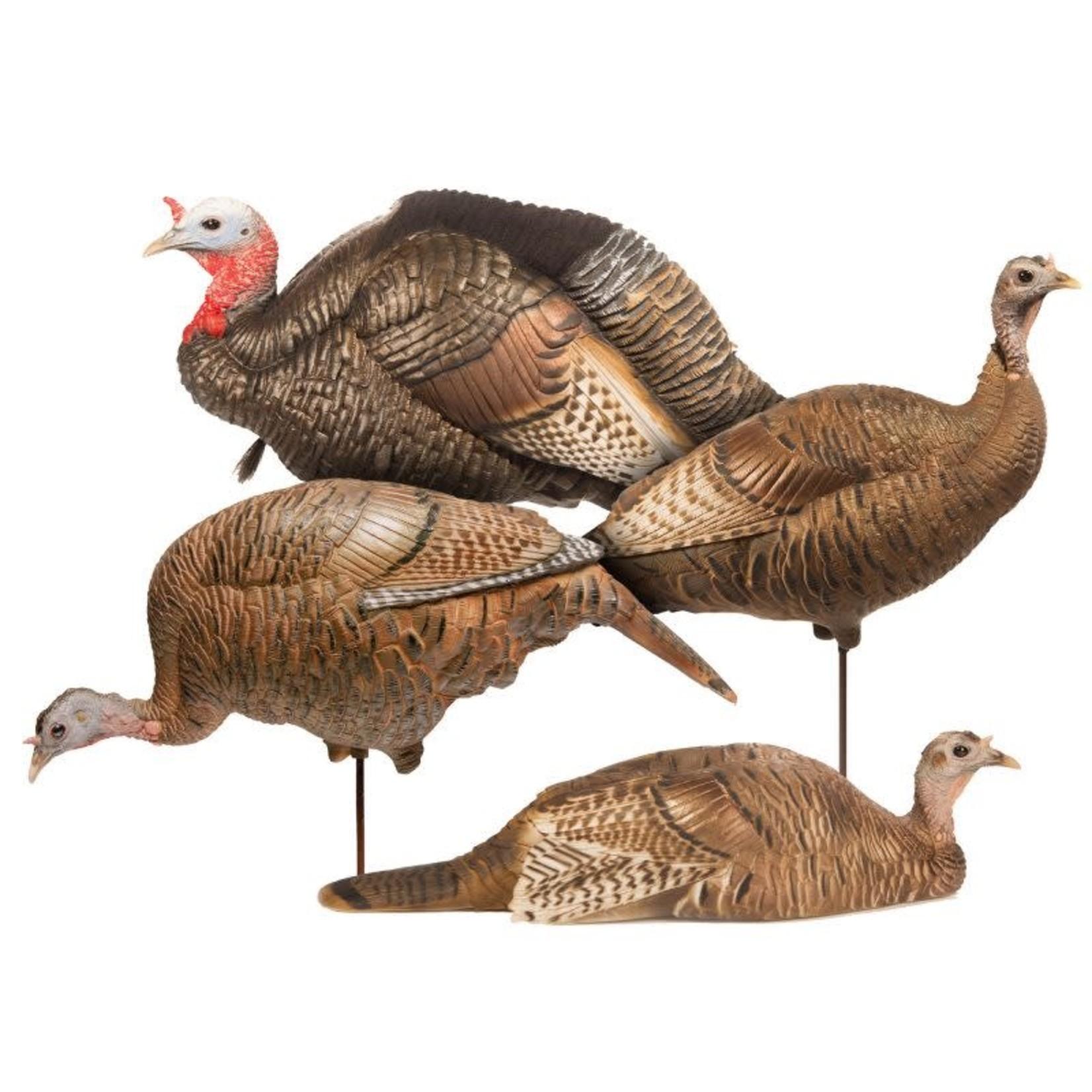 DSD DSD Turkey Flock Pkg (4 Decoys)