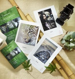 """Hahnemuhle Hahnemuhle Nature Line SAMPLE Pack 13""""x19"""" Includes: Bamboo, Hemp, Agave. 2 sheets of each"""