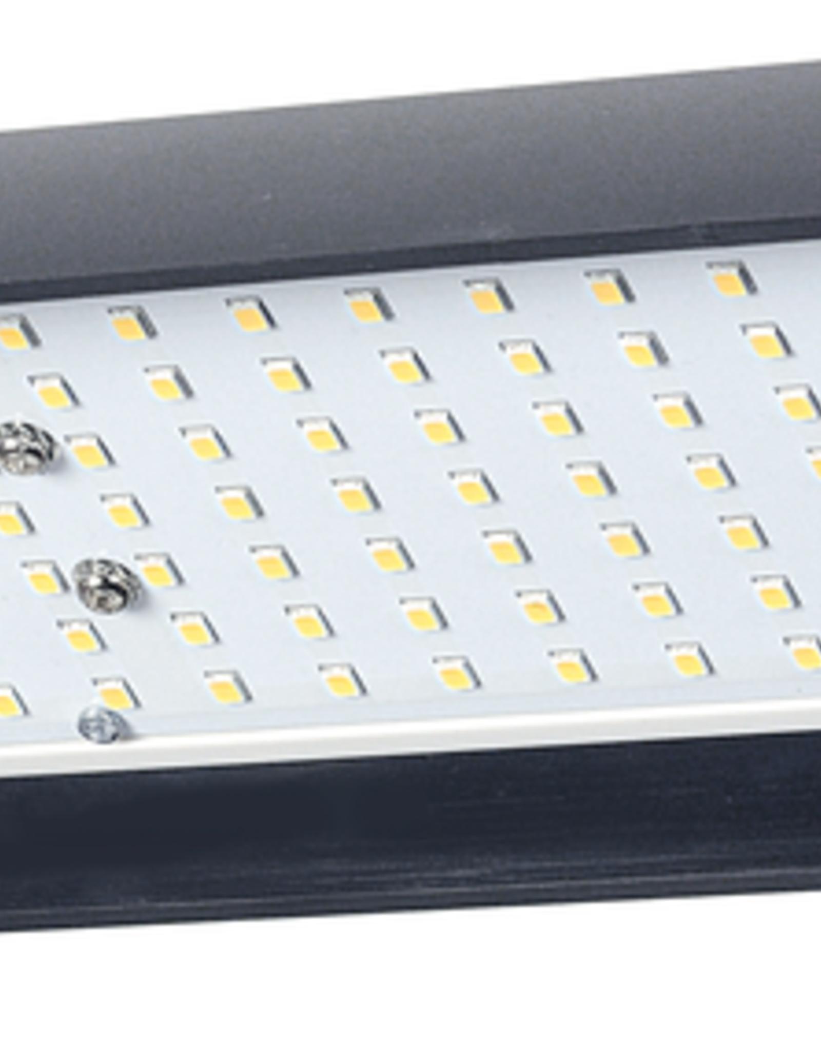 Kaiser Kaiser RB 5020 DS2 LED Lighting Unit, CRI=95.  100 - 120 V / 60 Hz, US-Plug