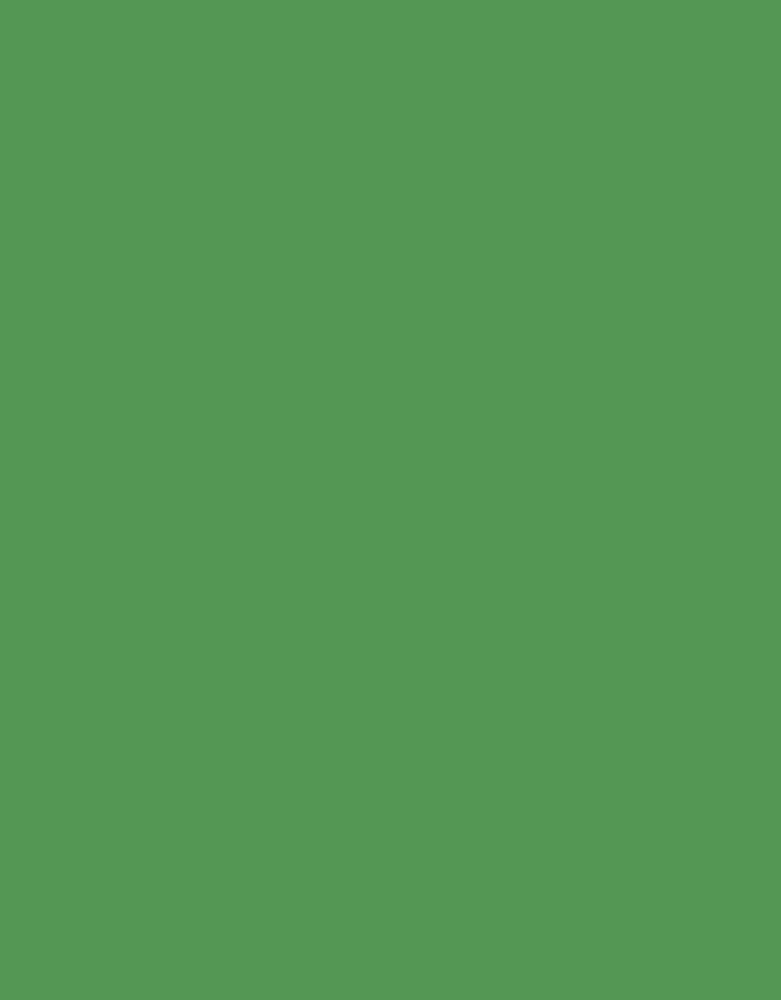 Superior Seamless Superior Seamless 4' Stinger #54 (Chroma Key compatible)