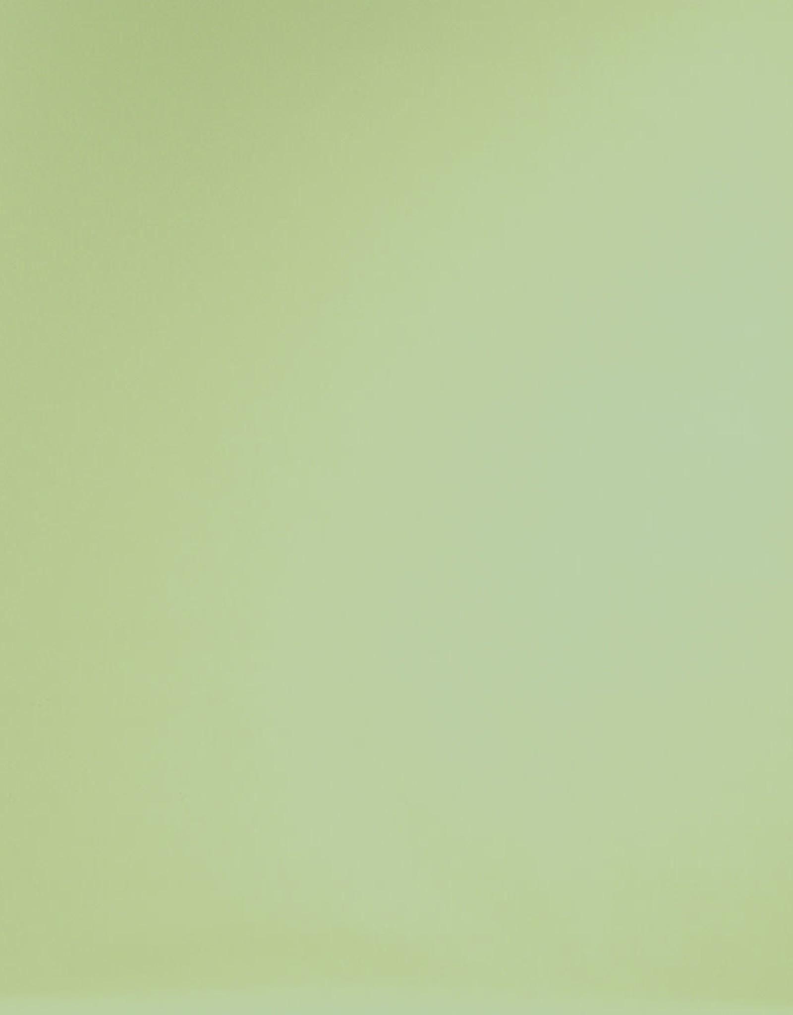 Superior Seamless Superior Seamless 9' Tropical Green #13