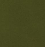 Robert Kaufman Big Sur Canvas Moss Green