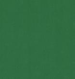 Robert Kaufman Big Sur Canvas Emerald