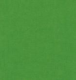 Robert Kaufman Kona Cotton Grasshopper