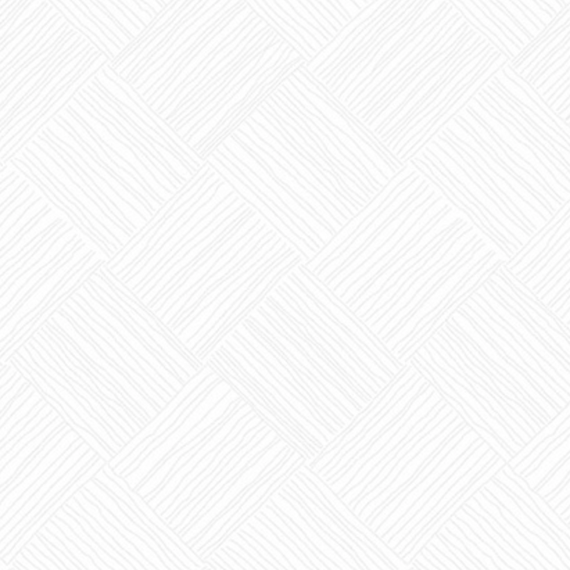 Andover Century White on White by Andover Bias Crosshatch