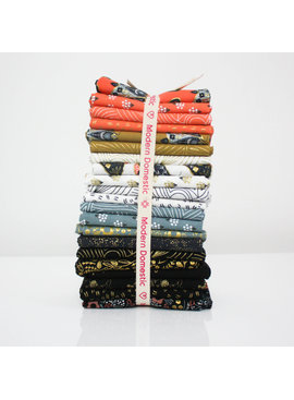 Modern Domestic 21 Piece Fat Quarter Bundle - Dwell in Possibility by Gingiber