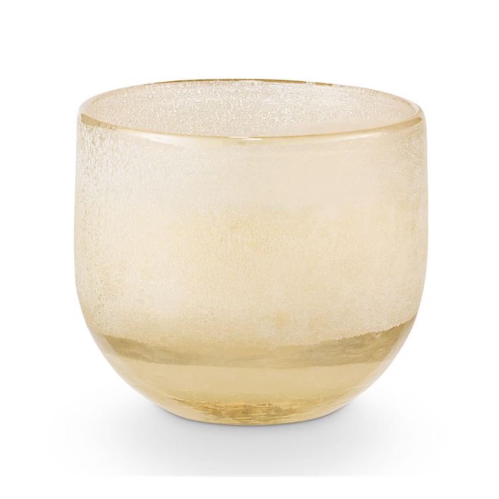 Illume Illume Coconut Milk Mango Mojave Candle