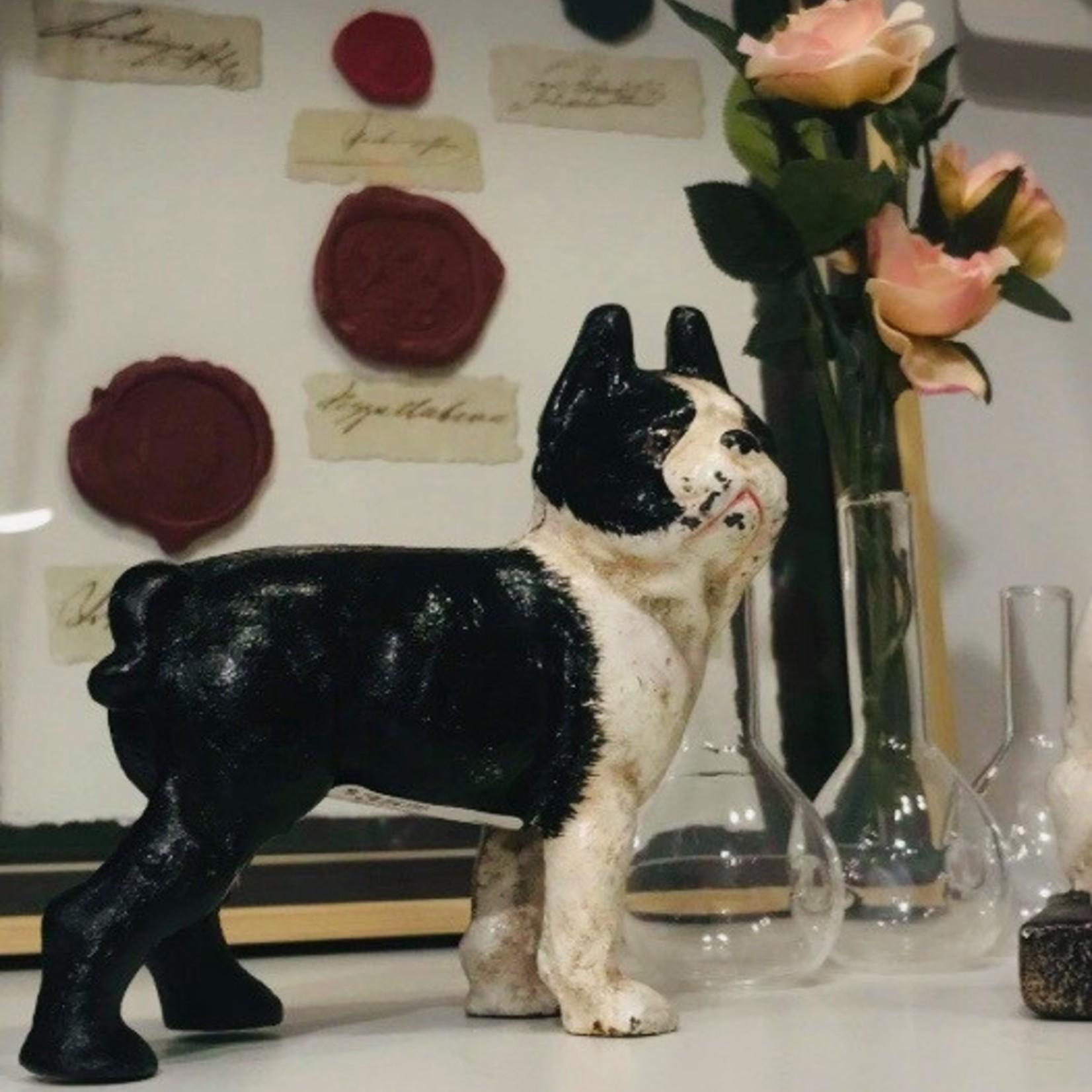 HomArt Tyson the Boston Terrier- Cast Iron