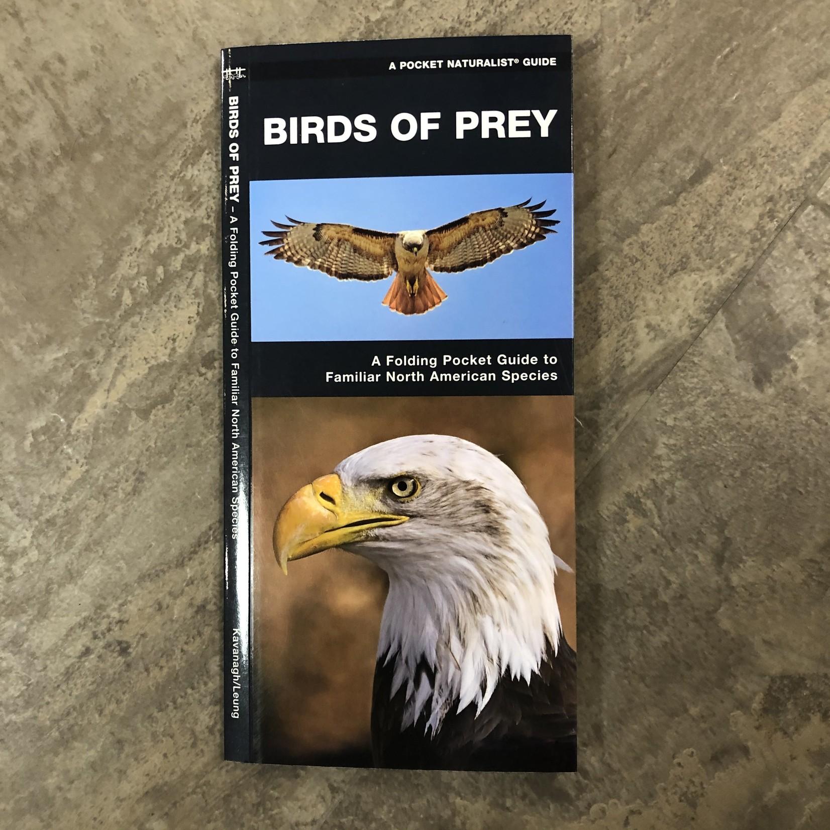 Folding Pocket Guide: Birds of Prey