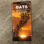 Folding Pocket Guide: Bats