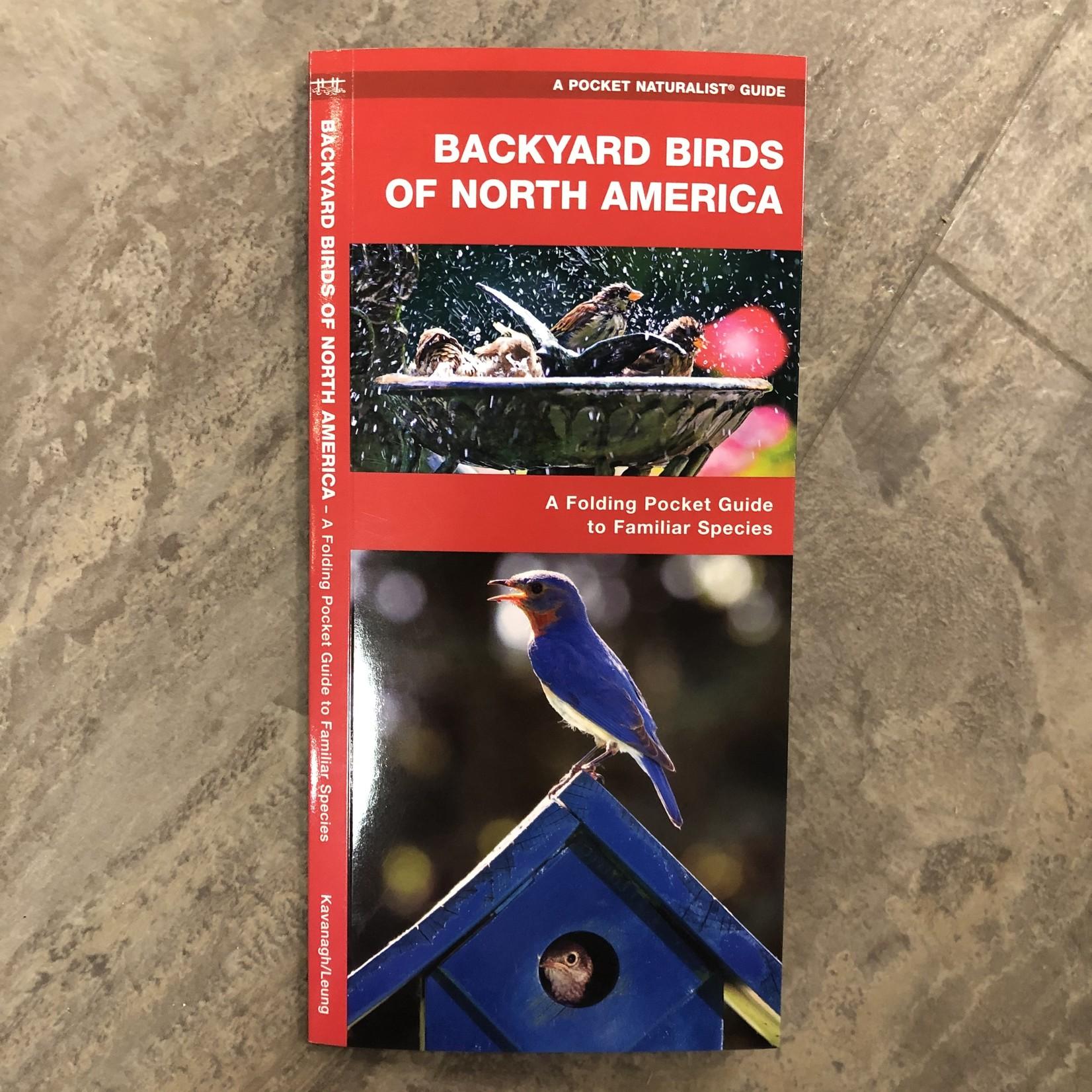 Folding Pocket Guide: Backyard Birds of North America