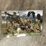 Placemat - Raptors of the West