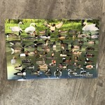 Placemat - Waterfowl of the West
