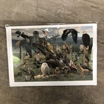 Field Guide Card - Raptors of the West