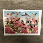 Field Guide Card - Hummingbirds of the West
