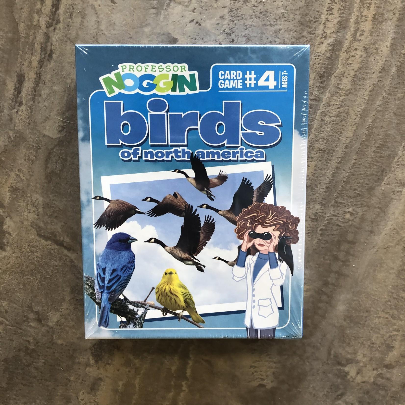 Professor Noggin Game - Birds of North America