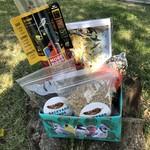 Bird Feeding Starter Pack