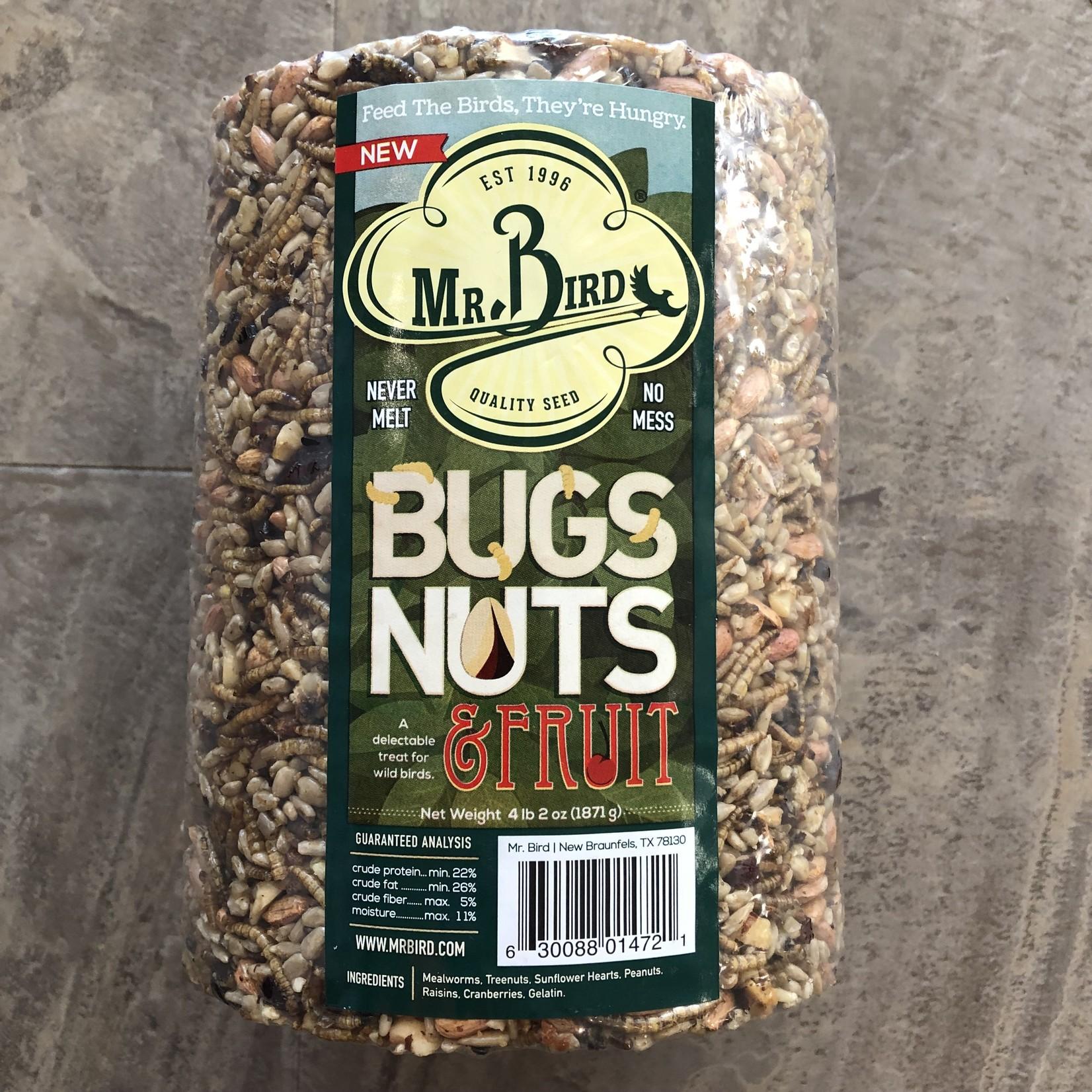 Bugs, Nuts & Fruit Cylinder - Large