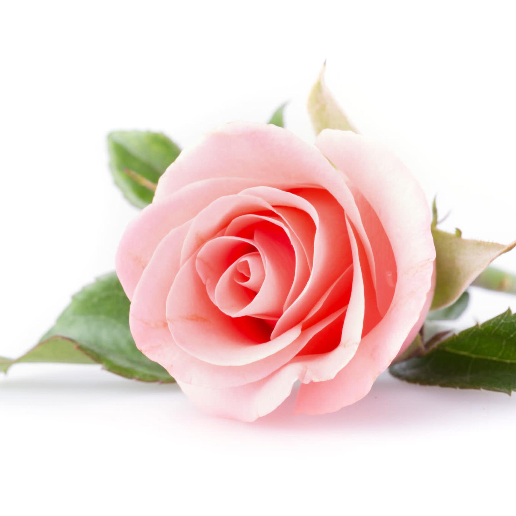 Real World Manuka Honey & Rose Hand Cream