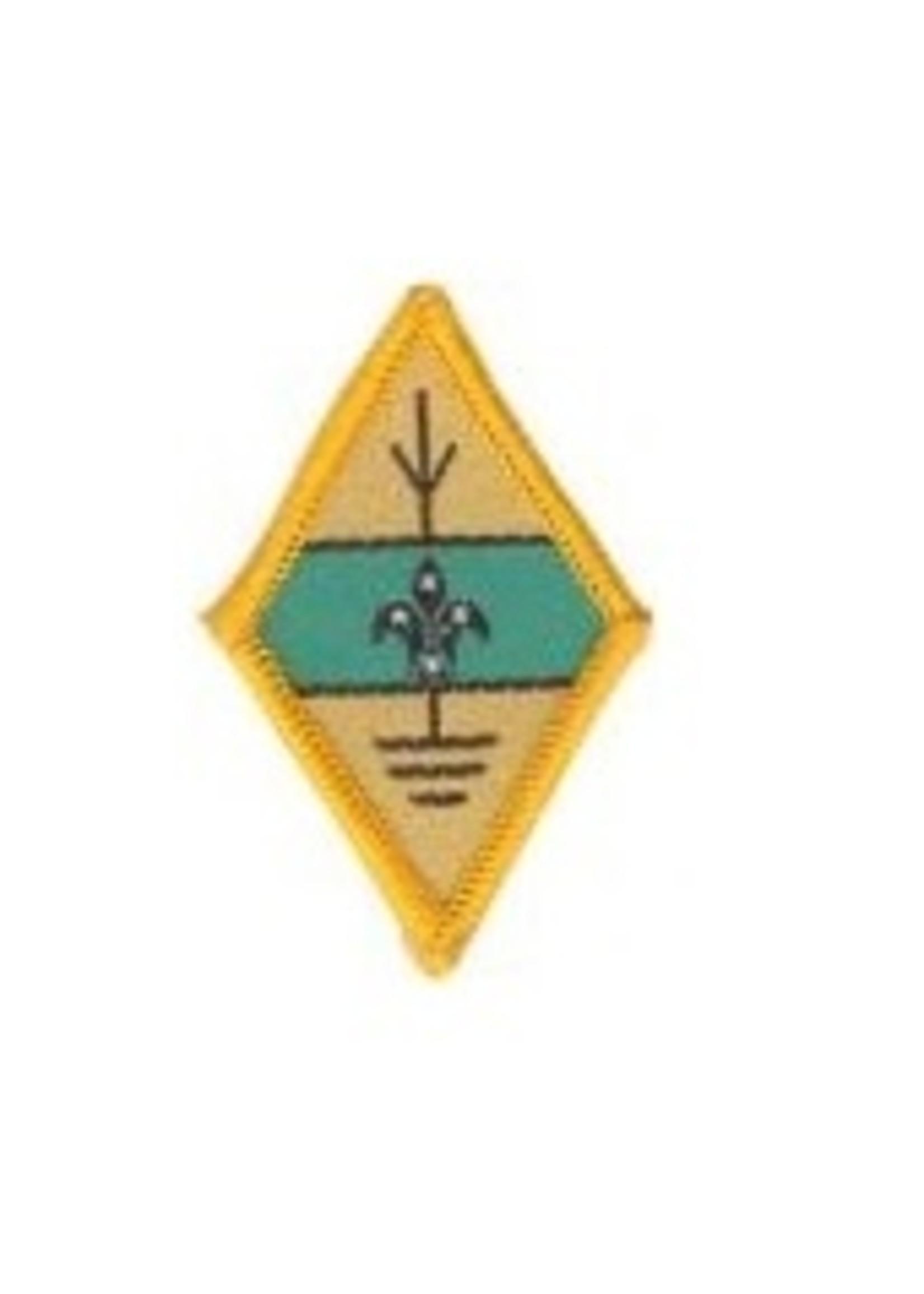 Amateur Radio Operator Badge