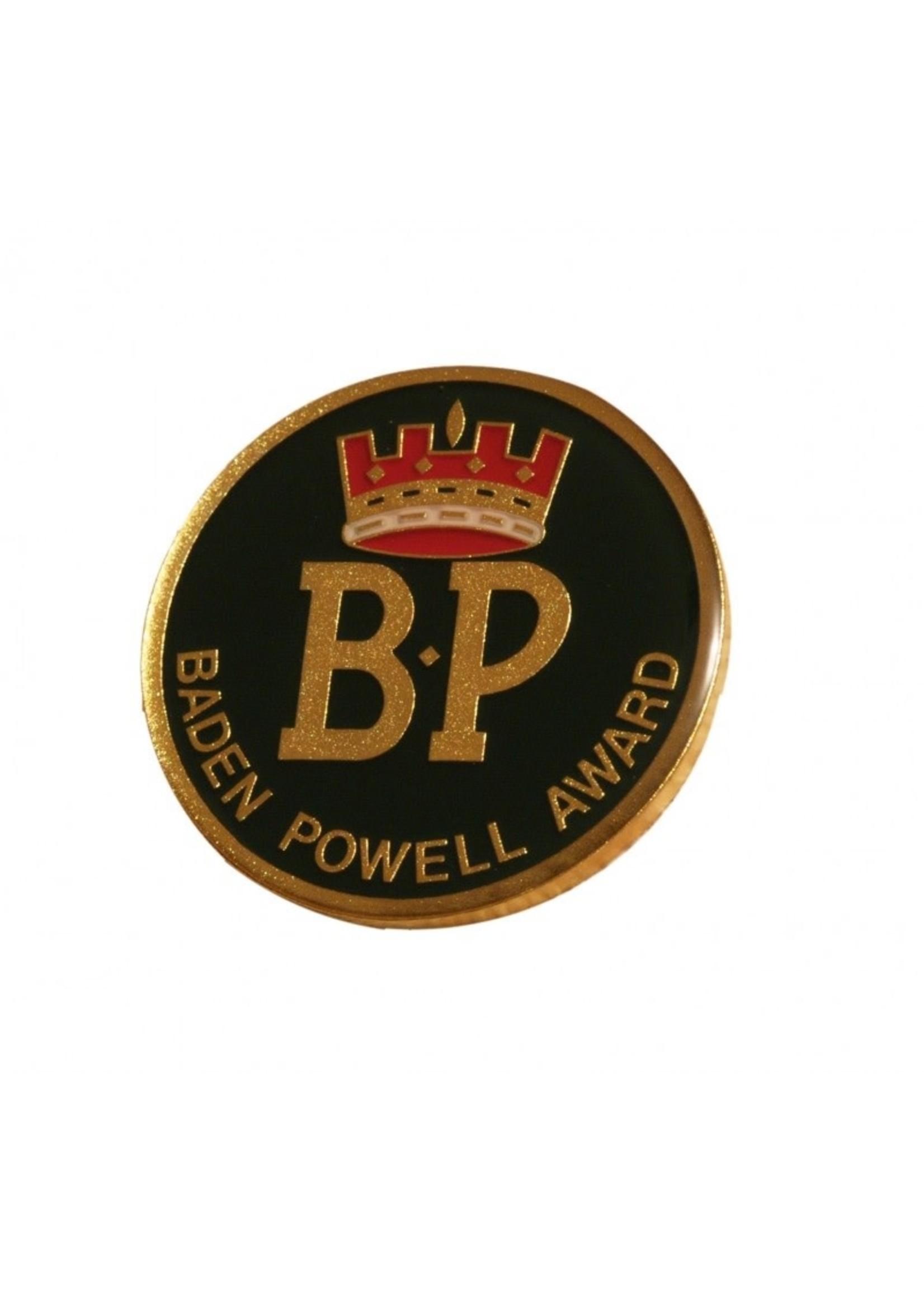 BP Award Lapel Pin