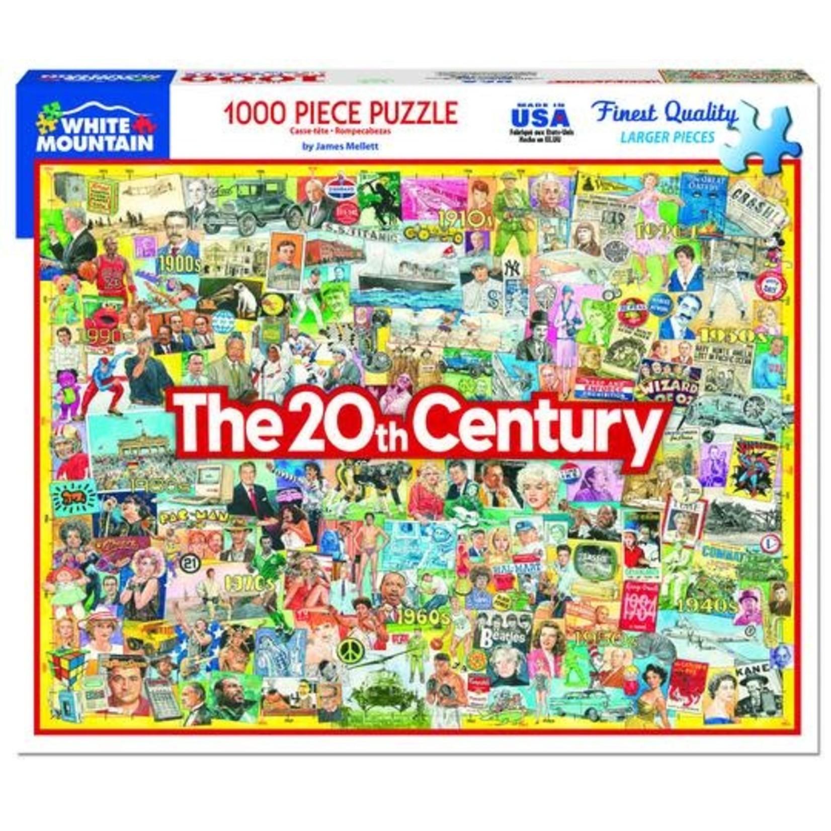 THE 20TH CENTURY  PUZZLE