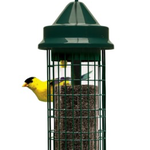 FEEDERS BROME SQUIRREL BUSTER FINCH FEEDER