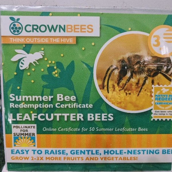 ACCESSORY CROWN BEES LEAFCUTTER BEE CERTIFICATE 5OCT.