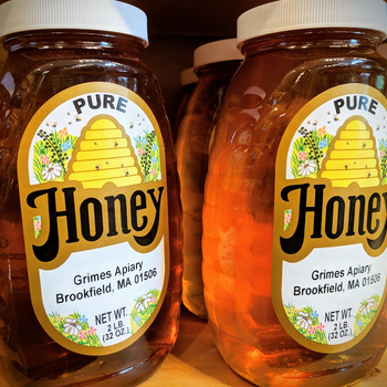 FOOD HONEY 2LB GRIMES