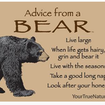 HHOLD ADVICE FROM A BEAR MAGNET