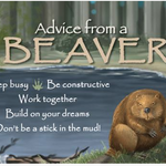 HHOLD ADVICE FROM A BEAVER MAGNET