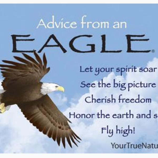 HHOLD ADVICE FROM A EAGLE MAGNET