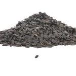 FEED BLACK OIL SUNFLOWER SEED #5 LB. BAG