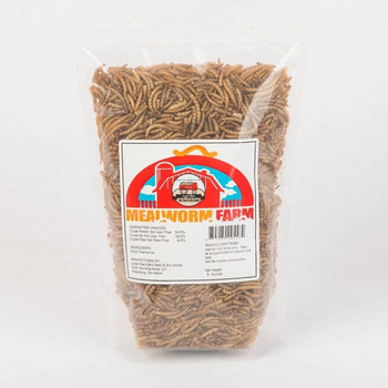 FEED LIZZIE MAE'S DRIED MEALWORMS 8 OZ