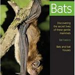 GUIDE BIRD WATCHER'S DIGEST: UNDERSTANDING BATS
