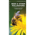 GUIDE POCKET NATURALIST: BEES & OTHER POLLINATORS OF AMERICA FOLDING GUIDE