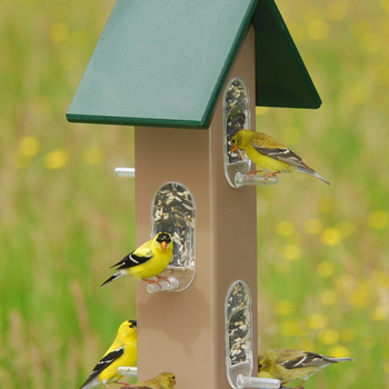FEEDERS SONGBIRD ESSENTIALS TUBE FDR WITH SEED TRAY